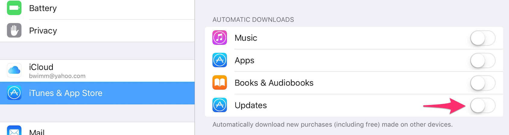 iPad - Turning off Automatic Downloads